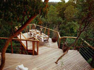 4-Tsala-Treetop