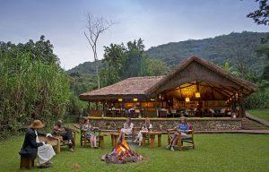 5-Gorilla-Forest-Camp