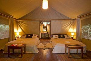 6-Gorilla-Forest-Camp