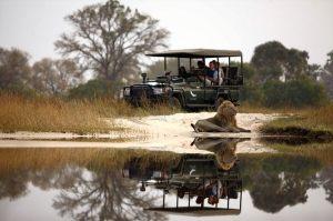 9-Sandibe-Safari-Lodge