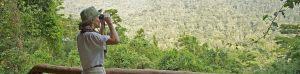 Titel-Gorilla-Forest-Camp