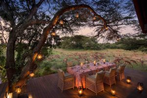 Guest-area-andBeyond-Phinda-Vlei-Lodge-9-1-1
