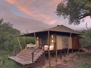Guest-tent-at-andBeyond-Ngala-Tented-Camp-1-