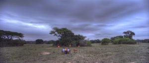 Phinda-Vlei-2013-31