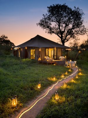 Romantic-room-dinner-at-andBeyond-Ngala-Tented-Camp